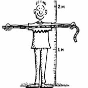 Measure-your-height